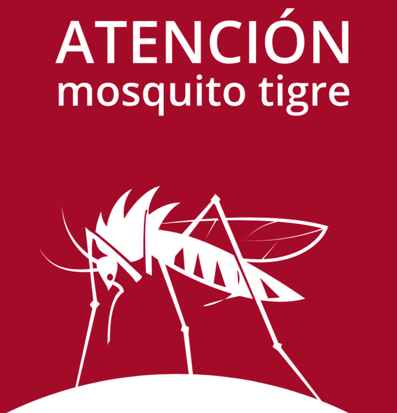 Atención mosquito tigre