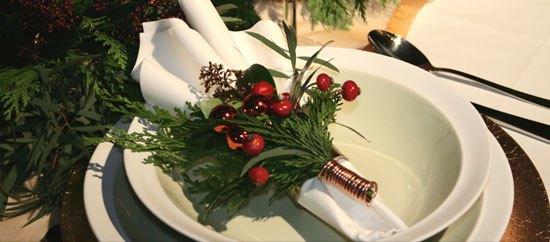 Plantas de Navidad para nuestra casa