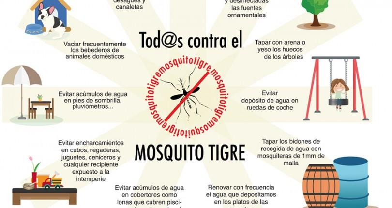 Otra vez el mosquito tigre