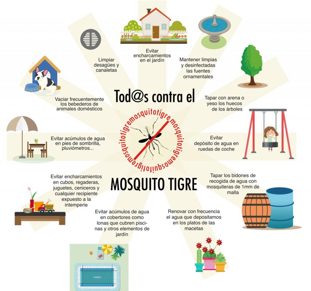 Todos contra el mosquito tigre