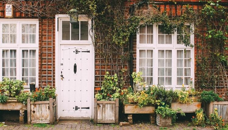 El jardín durante el otoño, cuidados fitosanitarios.
