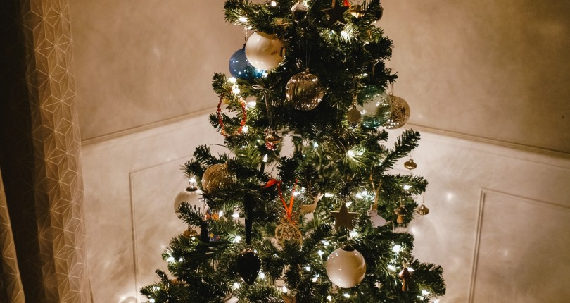 ¿Qué hacemos con un abeto natural después de las Navidades?
